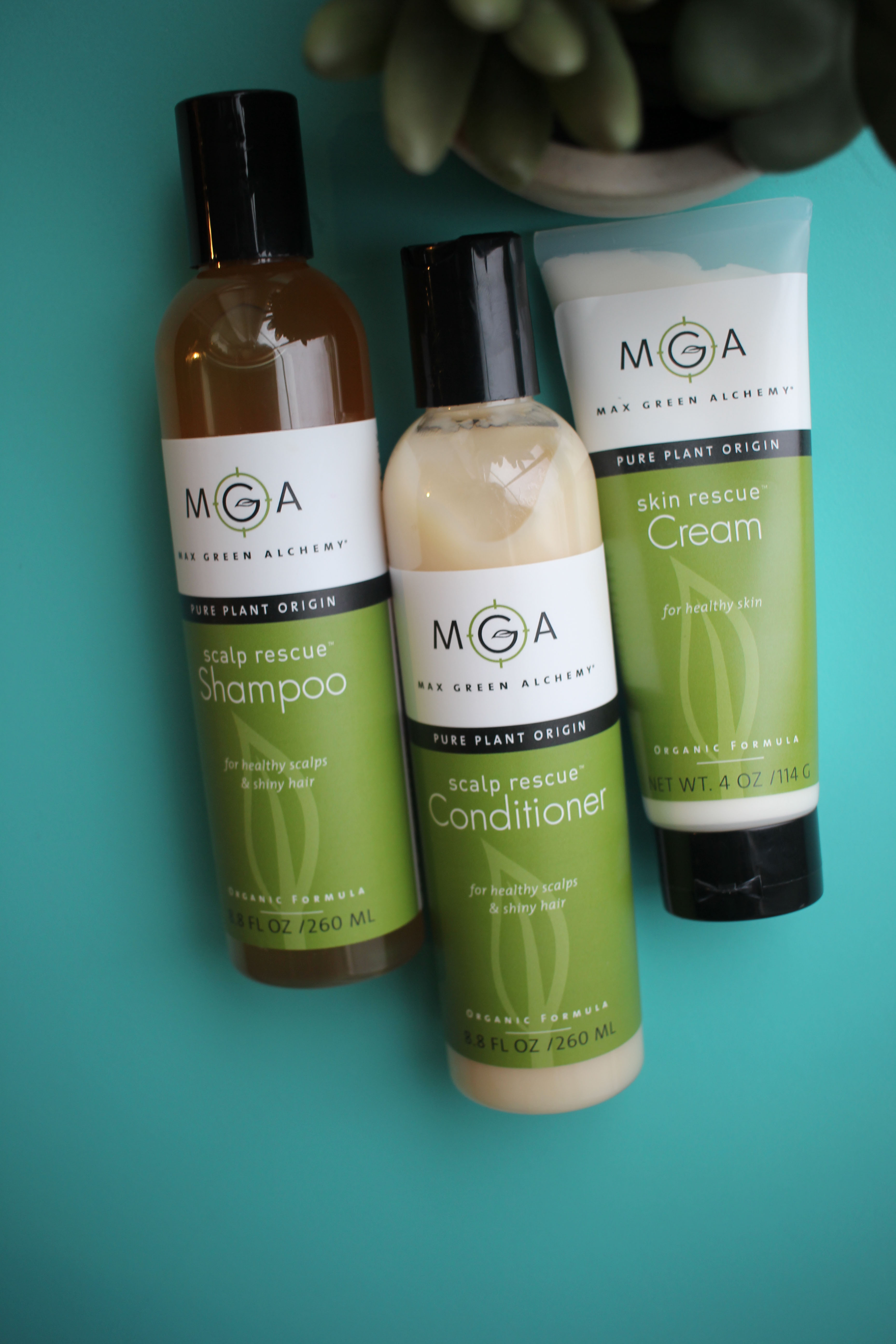 Green beauty shampoo and conditioner that work great against dandruff, and a hand cream that works amazing on chapped skin. Check them out!